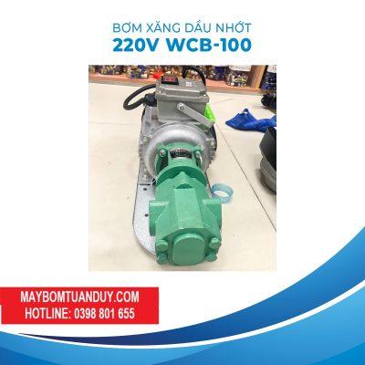 Bơm Dầu Nhớt Bánh Răng 220V 1100W 100LP