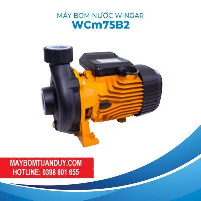 Máy Bơm Nước Wingar WCM75B2 220V 1HP 500L/P